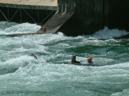 Reussschwimmen--186